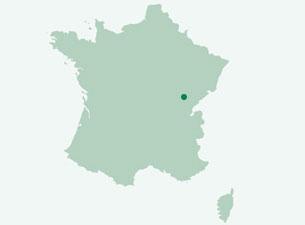 Dijon3