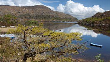 Der berühmte Killarney-Nationalpark um Muckross House ist nur wenige Kilometer entfernt und bietet sich als Teil des Ausflugsprogramms an.